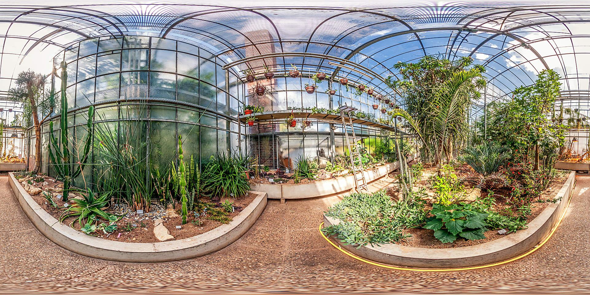 Botanischer Garten Darmstadt - Sukkulentenhaus