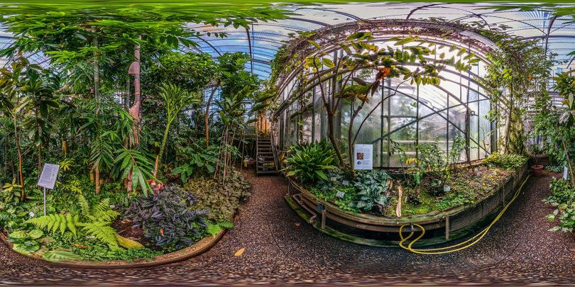 Botanischer Garten Darmstadt - Tropenhaus