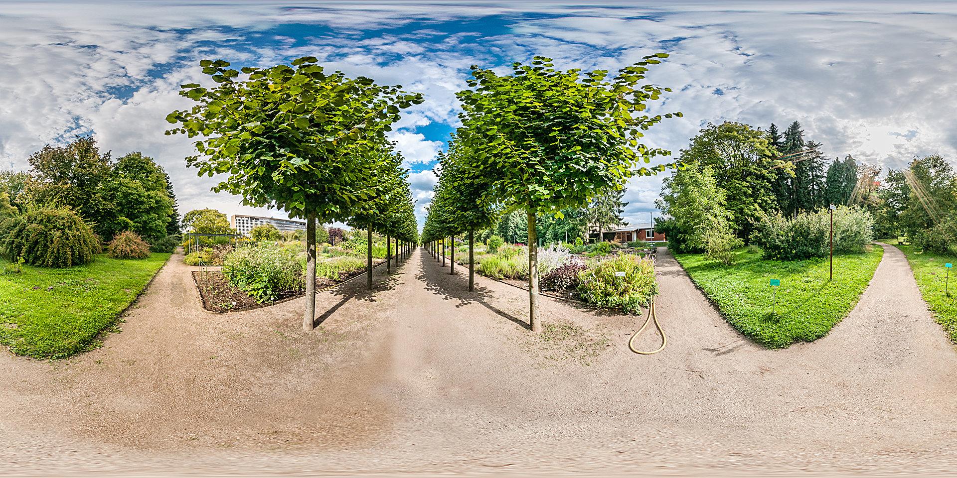Botanischer garten mainz panorama fotos - Garten fotos ...