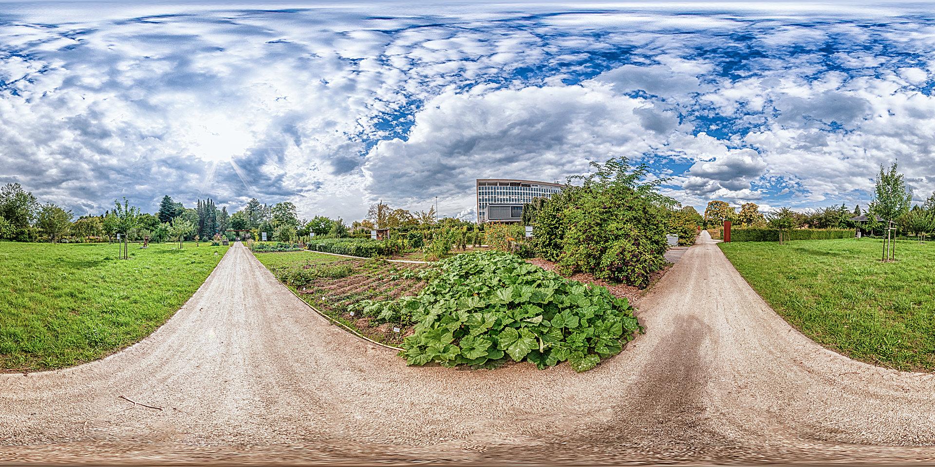 Botanischer Garten Mainz Freiland