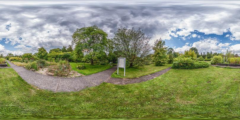 Botanischer Garten Marburg Freiland