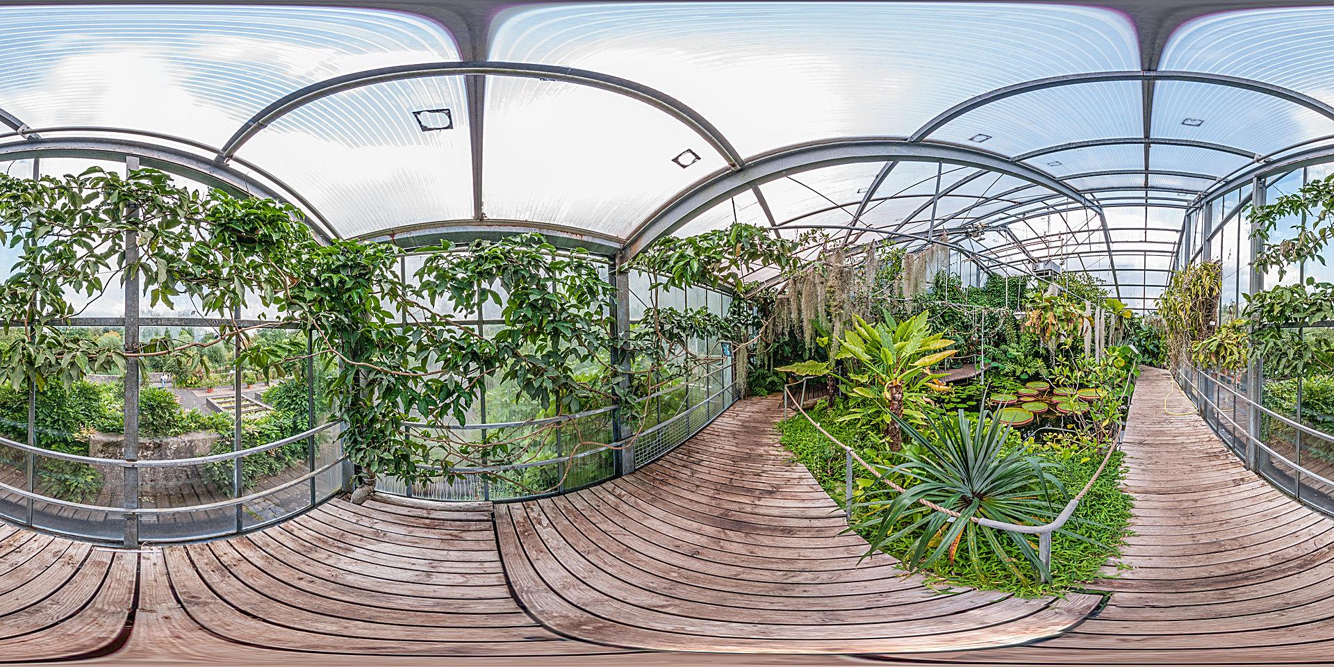 Botanischer Garten Marburg - Wasserpflanzenhaus