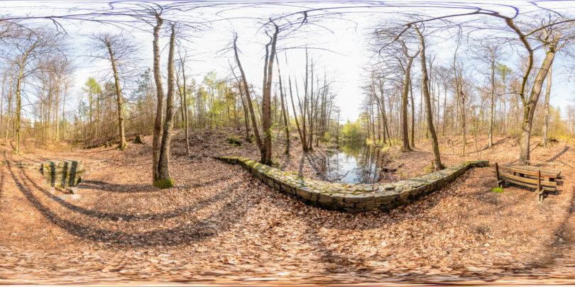 Darmbachquelle im Stadtwald bei Darmstadt