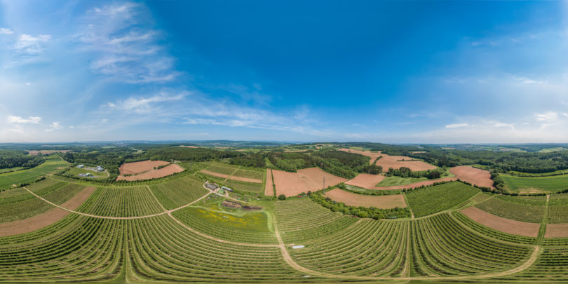 Luftaufnahme der Obstplantage Latz in Saarwelligen