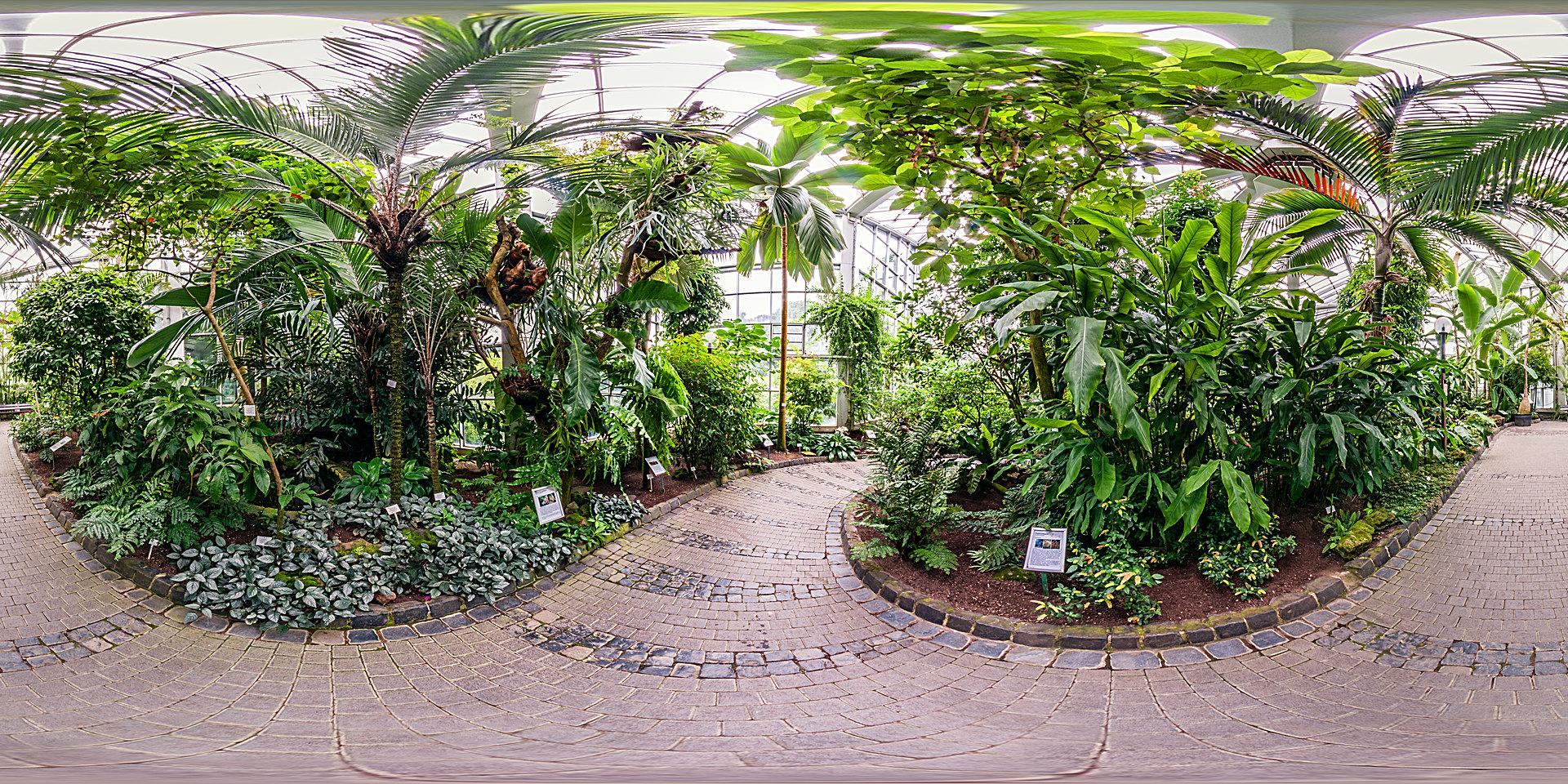 Palmengarten Frankfurt - Tropicarium Monsunwald