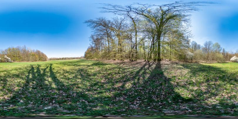 Naturschutzgebiet Scheftheimer Wiesen bei Darmstadt
